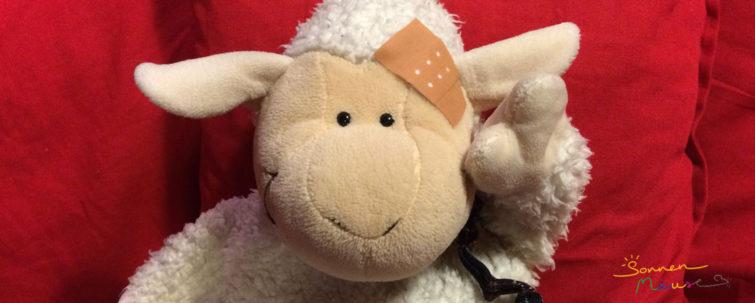 Schaf mit Pflaster